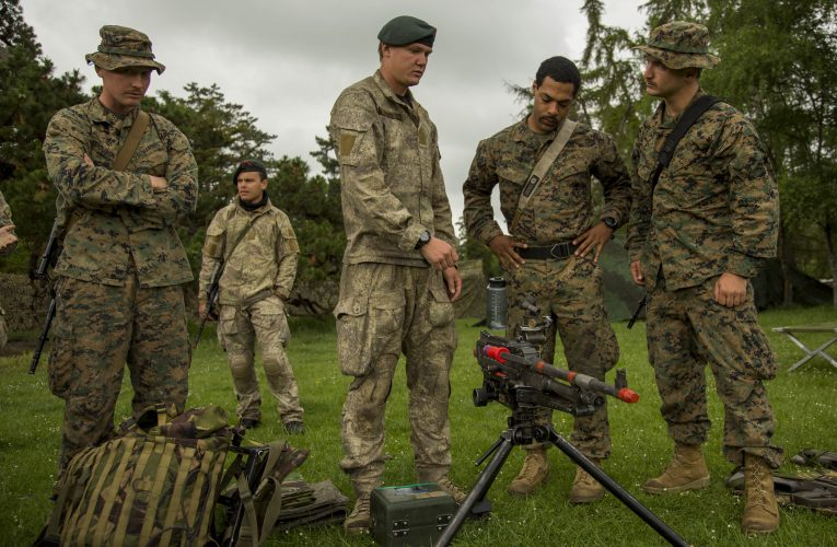 NZDF Scales Back Exercise Southern Katipo